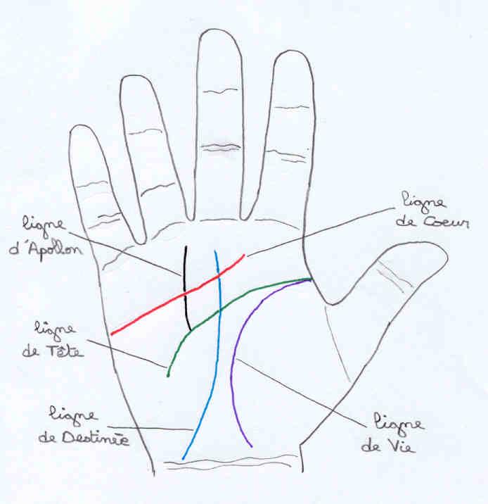 Les lignes de la main, tarot et autres... Main